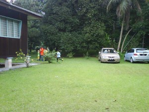 the yard. sangatlah green!!